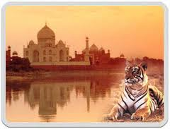 wildlife-with-taj-mahal
